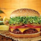 22e6a07339cd9e84e4a0d3cd61b6c3b3 140x140   Alpine Burger   RecipesNow.com