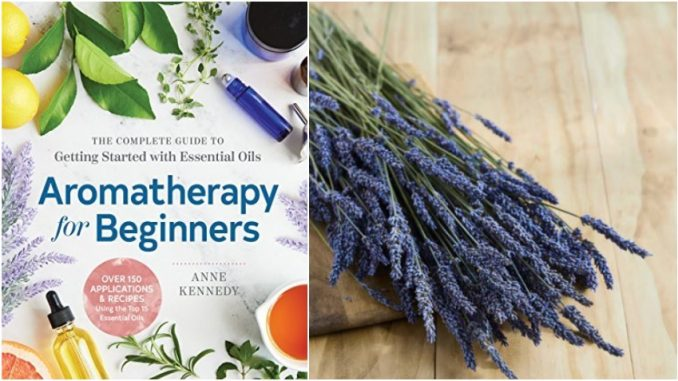 Aromatherapy For Beginners - Review