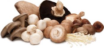 mushroom group 350x161   Asparagus and Mushroom Brunch Dish   RecipesNow.com
