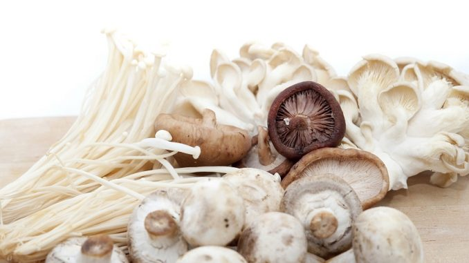 An Introduction To Fresh Canadian Mushrooms | RecipesNow!